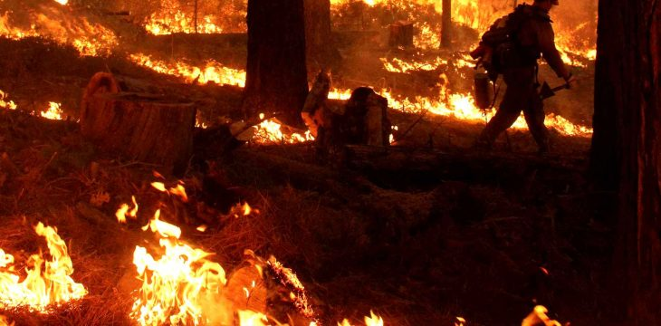 Assurance habitation et incendie de forêt : quelles sont les protections?