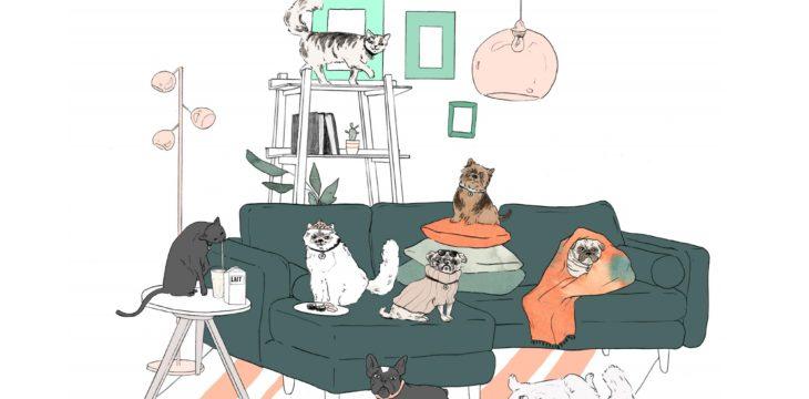 Des meubles tendances pour vos animaux de compagnie
